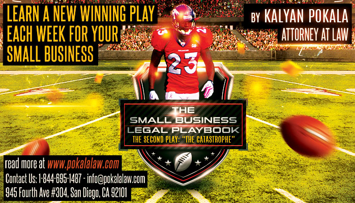 small business legal playbook the catapsrophe